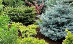 99 Small Front Yard Landscaping Ideas Low Maintenance 47