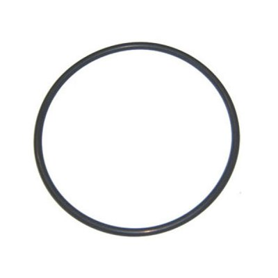 Aqua-Flo A-Series Pump Lid O-Ring 92200000