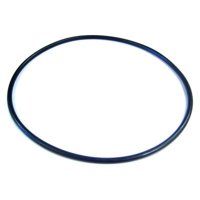 Jandy Backplate O-Ring SHP PHP SWF JEP Pump R0446300
