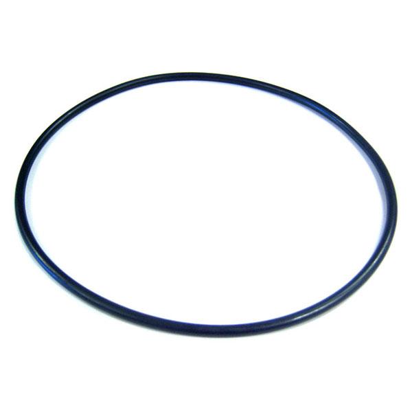Jandy Pot Lid O-ring JHP JHPU Pump R0555400