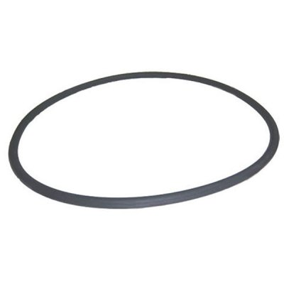 Pentair FNS Plus Quad DE Filter Tank O-Ring O-497 39010200