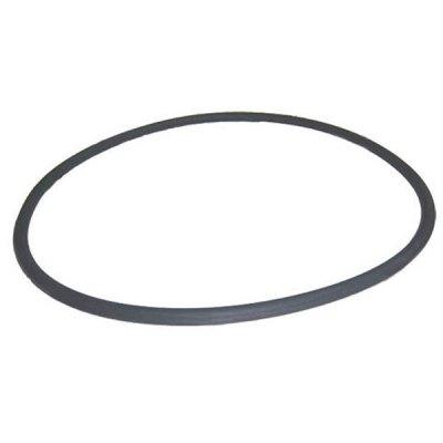 Pentair FNS Plus Quad DE Filter Tank O-Ring O-497 39010200