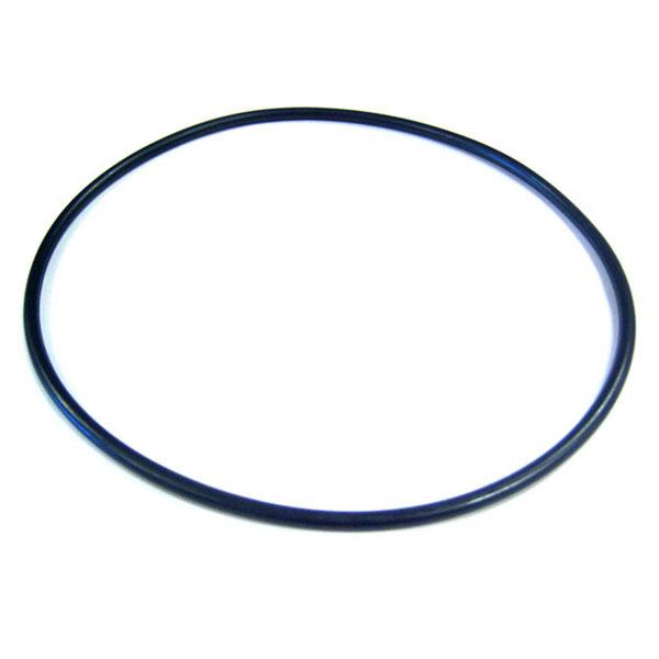 WhisperFlo Pump Pentair Lid O-Ring 071422 V20-370 O-108