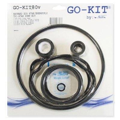 Aladdin Hayward EcoStar Tristar Pump Seal Kit GO-KIT80V