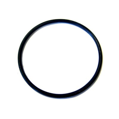 Pentair Kreep Krauly R211084K Leaf Canister O-Ring R172223