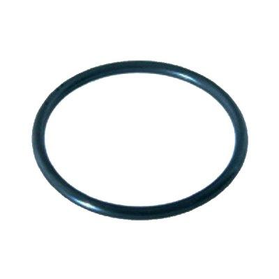 Pentair SuperFlo VS Pump Union O-Ring 6020018