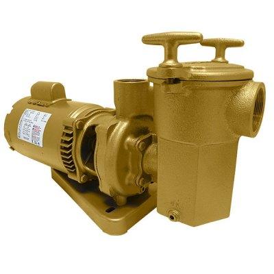 Swimming Pool Spa Aqua-Flo A-Series Brass Pump 1/3 HP 11003000