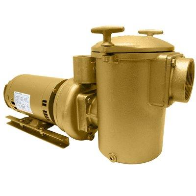 Swimming Pool Spa Aqua-Flo AC-Series Brass Pump 3 HP 3PH 10130000