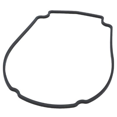 Waterway Champion Econo-Flo Pump Faceplate Gasket 711-1400 806-1400