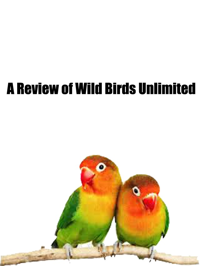 A Review of Wild Birds Unlimited
