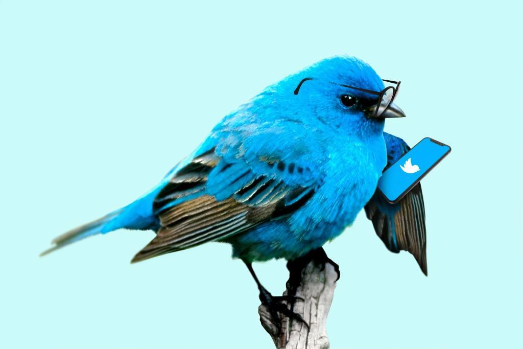 Twitter Facing $250M Fine For Misusing Customer Data