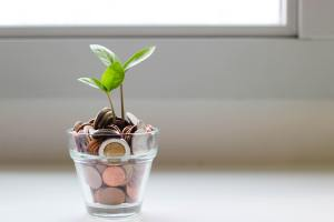 Does ISO 14001 Certification Make You More Profitable?