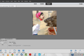 Adobe Photoshop Elements 12 Software  Review