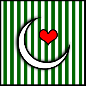 pakistan flag display picture