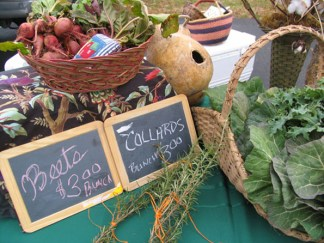 Davidson Farmer's Market is one of Lake Norman's most popular