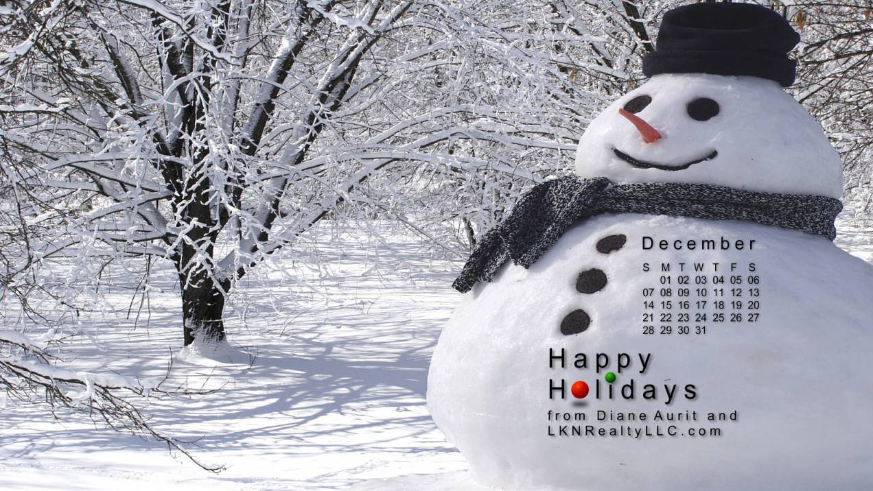 Happy Holidays from Lake Norman Real Estate