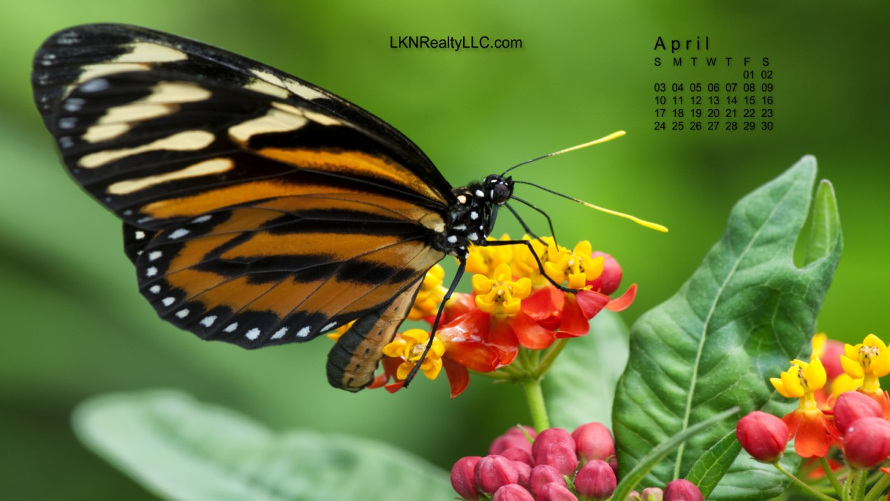 Lake Norman April 2016 Desktop Calendar