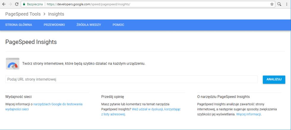 Blog - Jak sprawdzić szybkość i optymalizację strony. Google PageSpeed Insights