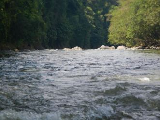 Plunging into the unknown on the Chiriqui Viejo river, Panama