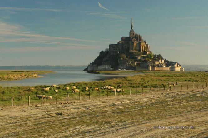 The Mont Saint Michel and its pré salés, France