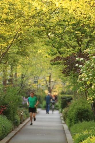 Running la coulée verte, Paris