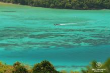 The splendid waters of Koh Phi Phi, Thailand