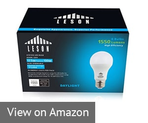 Leson 100w e26-e27 LED Bulb Review