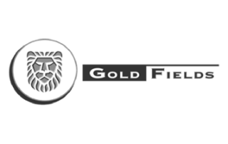 gold-fields-best-sap-client