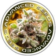Photo of Advanced Seeds Review