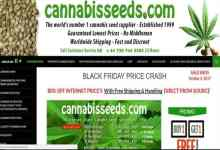 Photo of Cannabisseeds.com Review