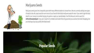 Photo of The Seed Depot