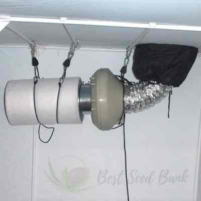 cannabis grow tent extraction fan