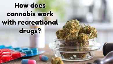 Photo of How does cannabis work with recreational drugs?