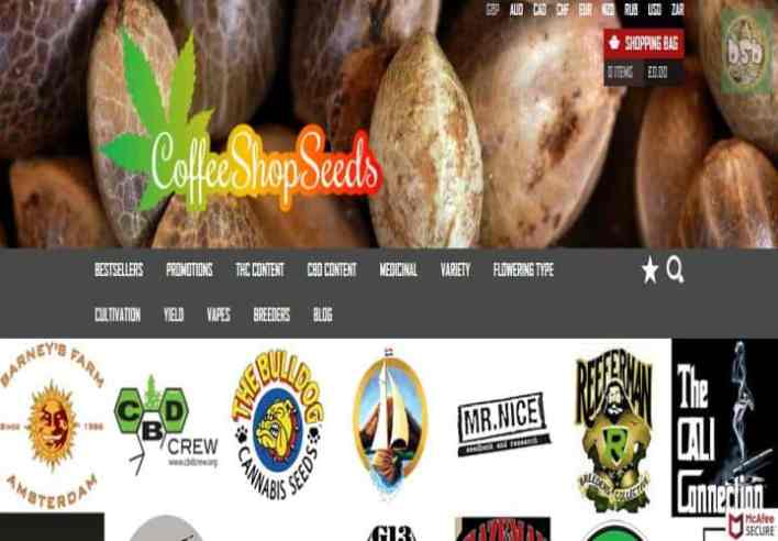 Coffee Shop Seeds Review