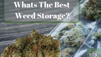 Photo of The Best Weed Storage