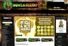 Photo of Bonza Seeds Review