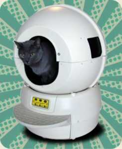 litter robot review - litter robot 2