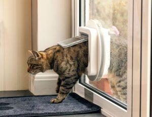 review of SureFlap Microchip Cat Door