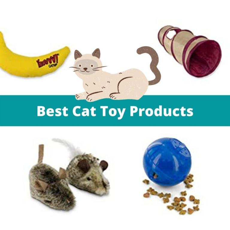 top cat toy products to buy