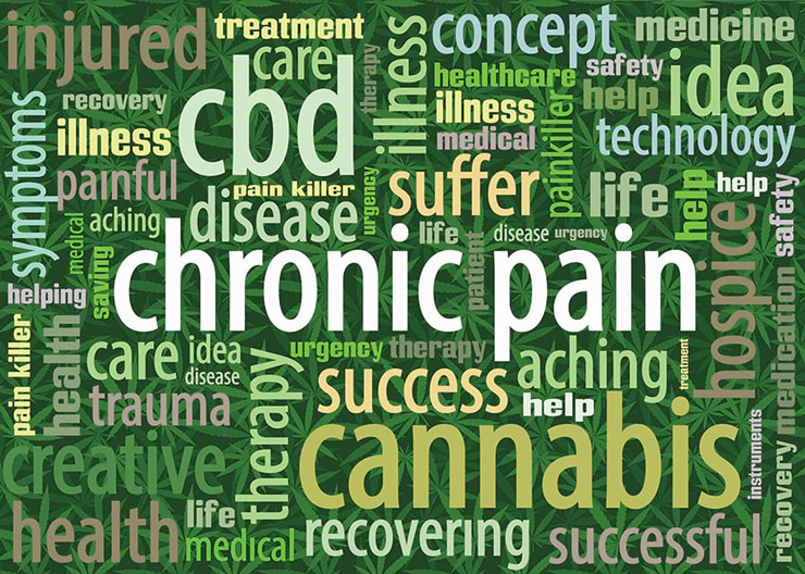 Graphic of words about CBD