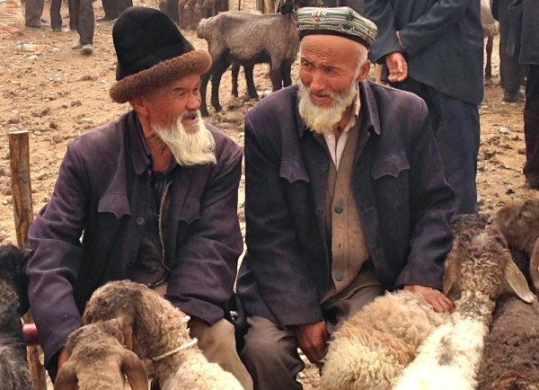 14. Sheep farmers Kashgar