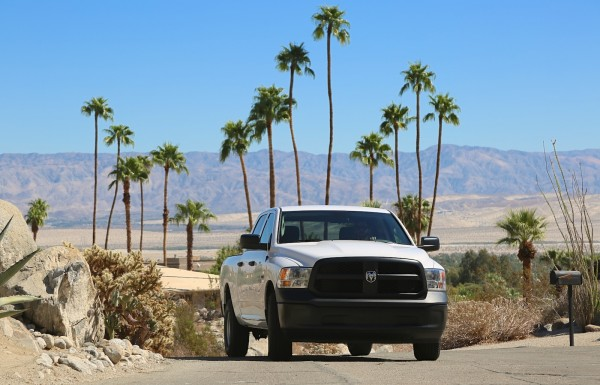 1. Albert Palm Springs 1
