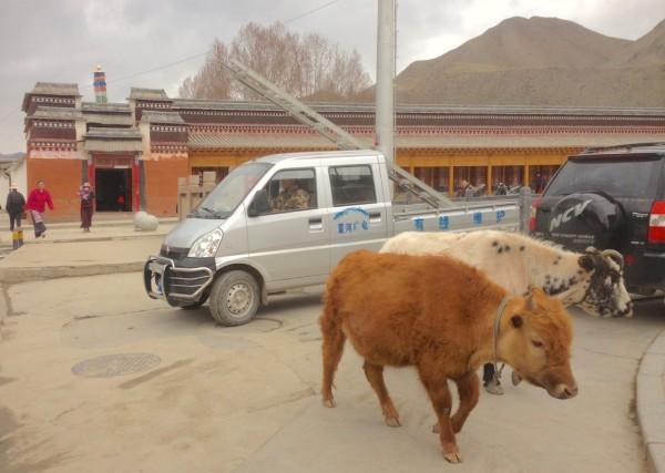 Wuling Mini Truck Xiahe China 2016