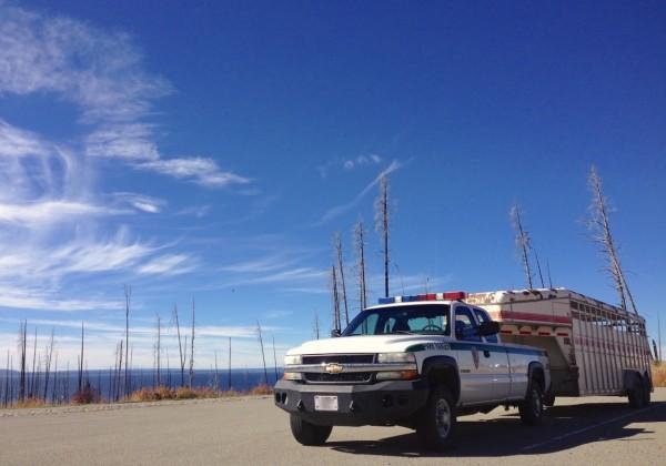 Chevrolet Colorado Yellowstone NP