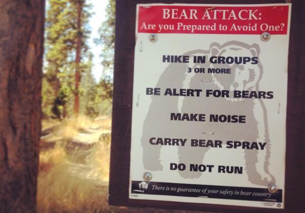 Yellowstone NP 3