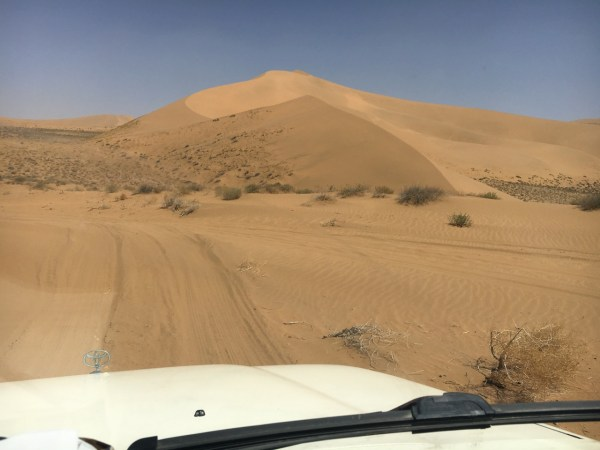 Image result for Your Definitive Self-self-help guide to Selecting The Very Best Desert Safari Dubai