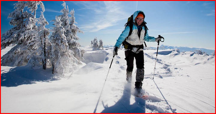 5 Reasons to Go Snowshoeing This Winter