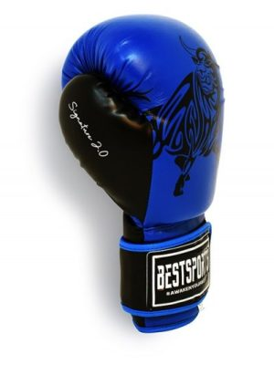 Signature 2.0 Boxing Gloves Blue