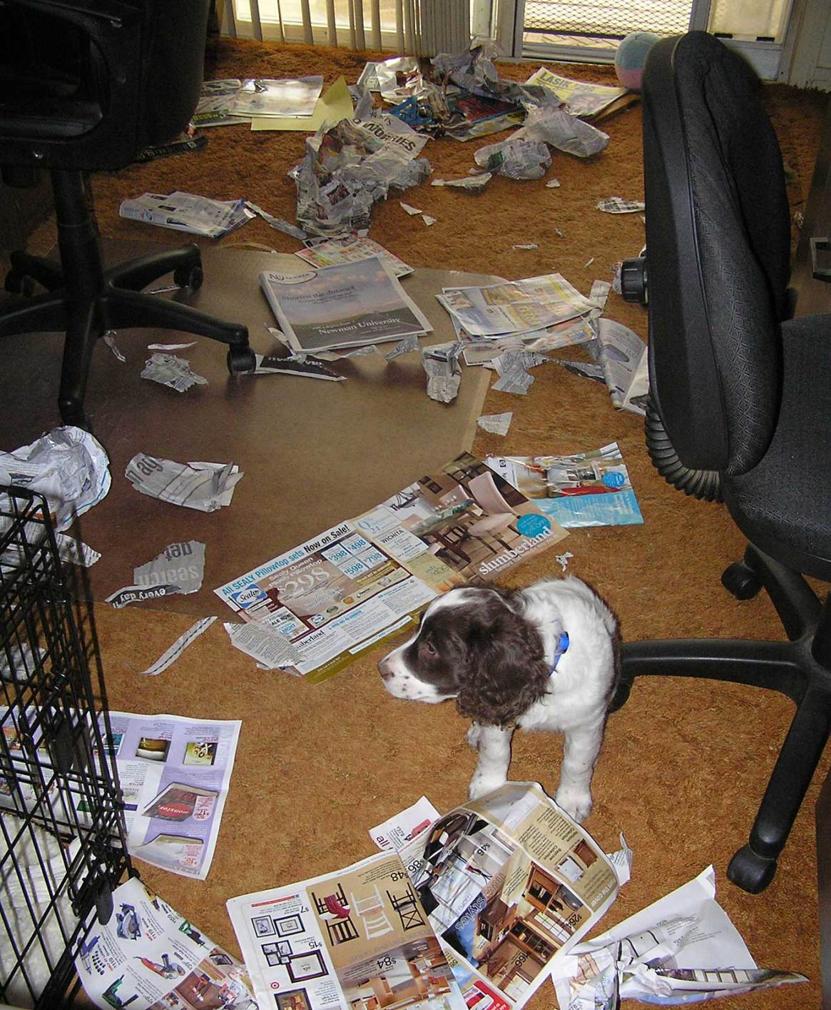 The office is a mess