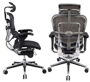 Ergohuman High Back Swivel Chair Bg